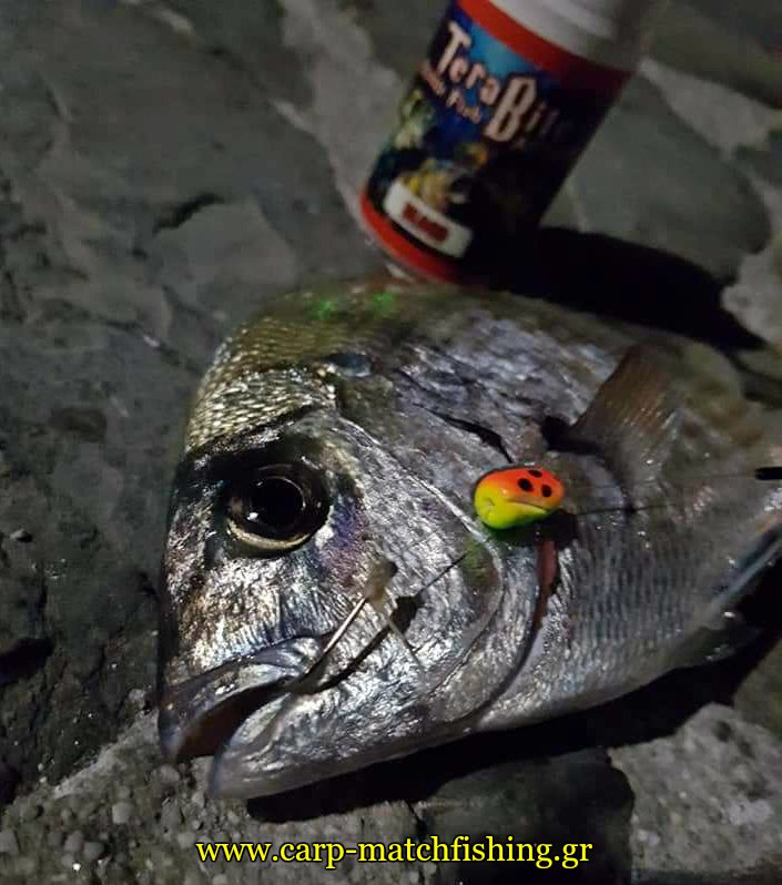terabite sargos float me ftera gfs carpmatchfishing
