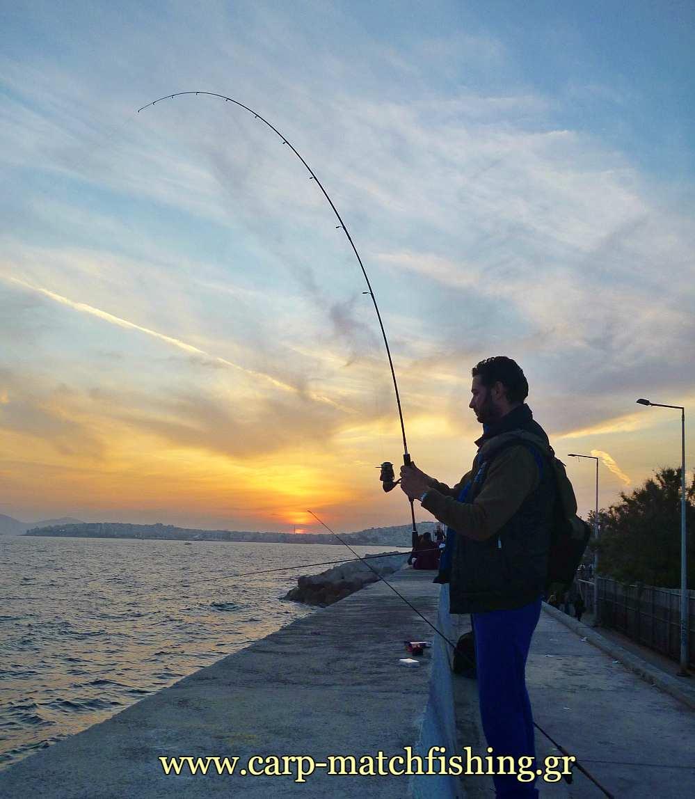 lrf-eging-curve-carpmatchfishing