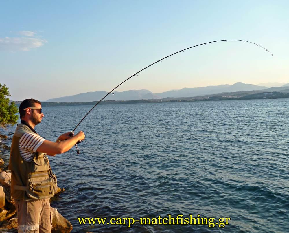 ajing-lrf-horse-mackerel-rod-curve-metal-jigs-carpmatchfishing