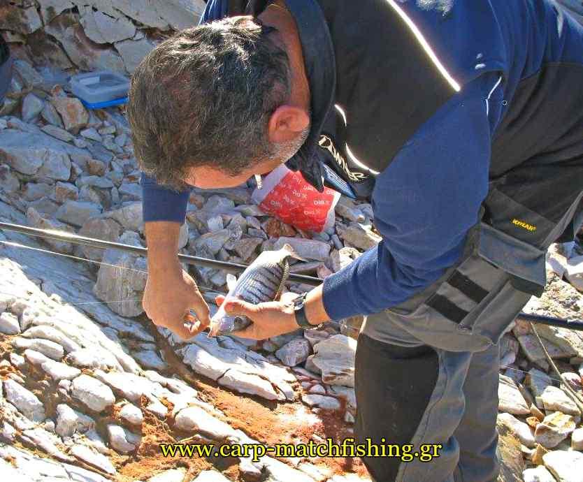 mourmoura-casting-carpmatchfishing