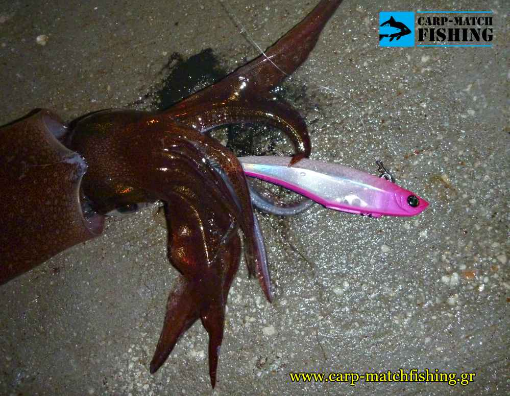 eging gourounakia kalamarieres pink ocean ruler messiah carpmatchfishing