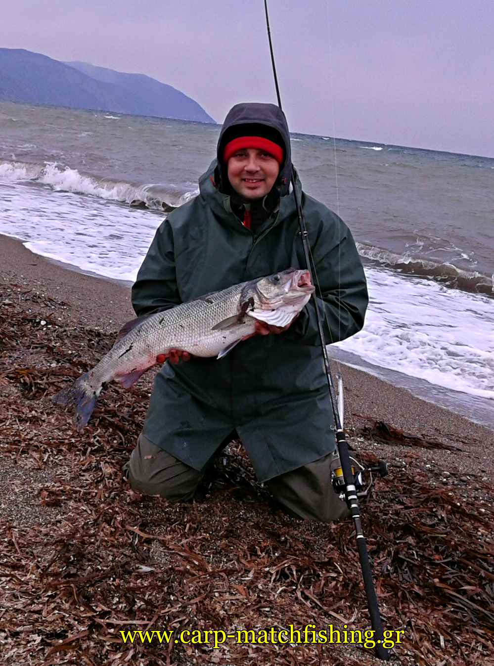 sea-bass-fishing-spinning-mastro-carpmatchfishing