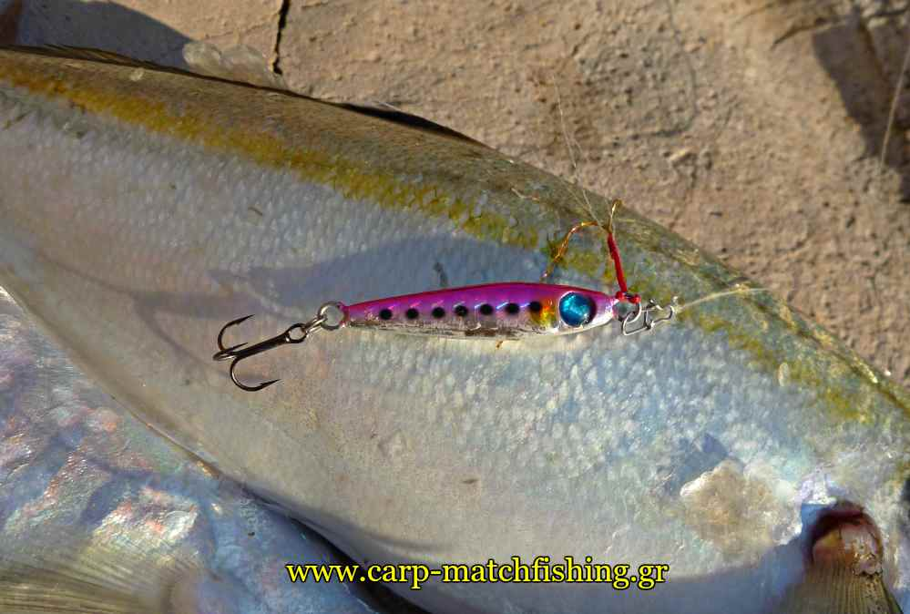 ajing-me-planous-hayabusa-finder-carpmatchfishing