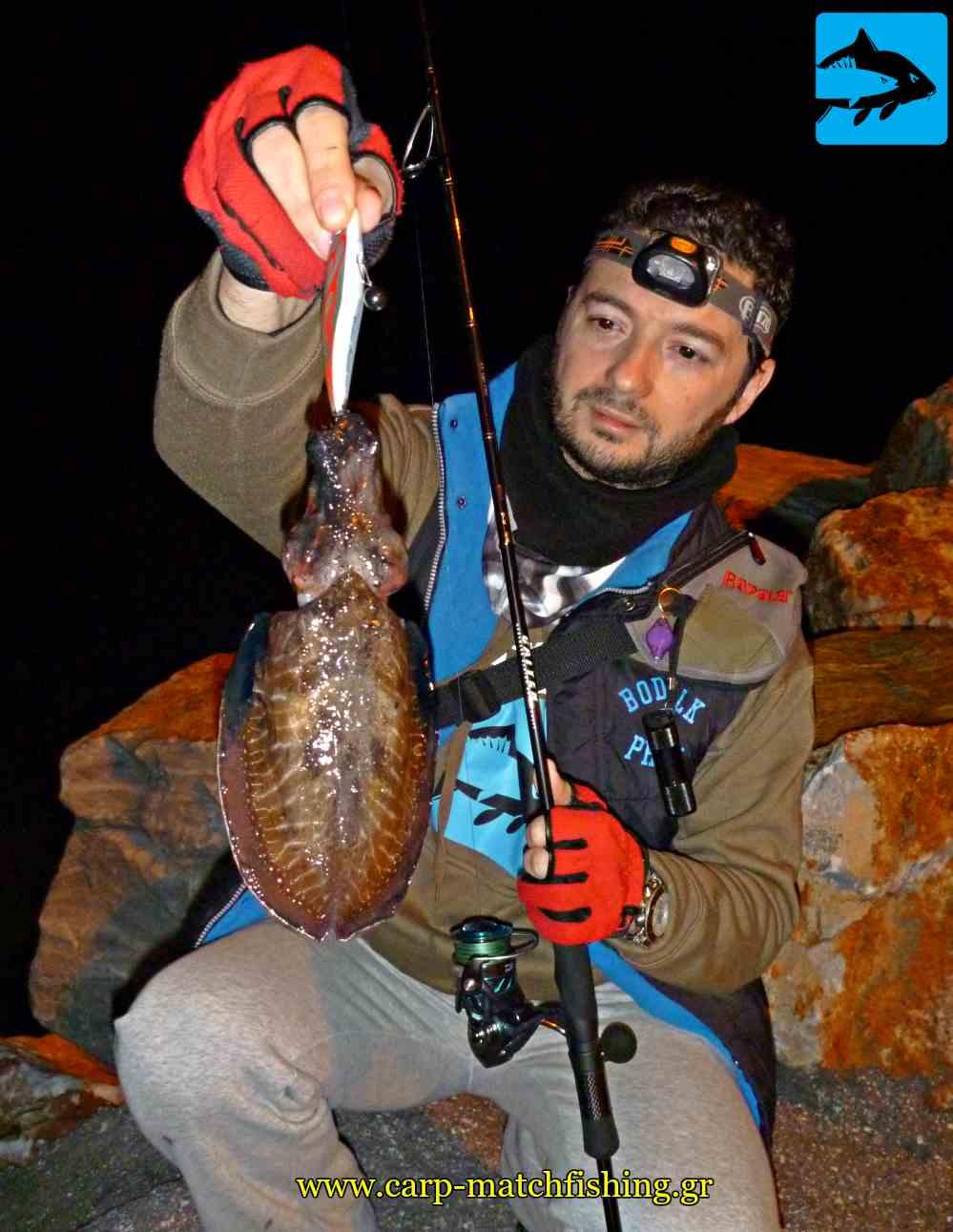 eging soupia sfaltos carpmatchfishing