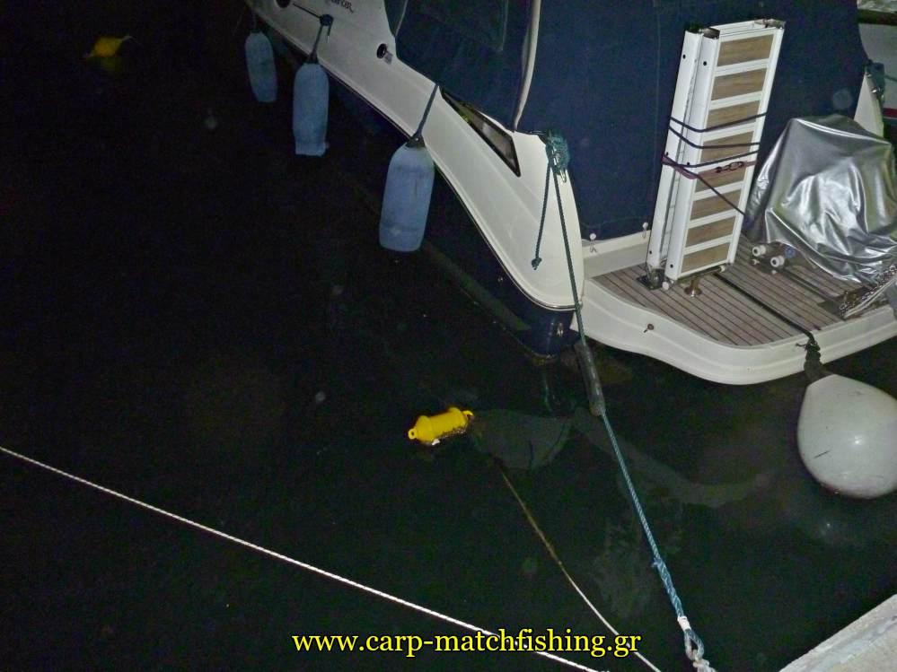 sxoinia varkes limania eging topoi kalamararion carpmatchfishing
