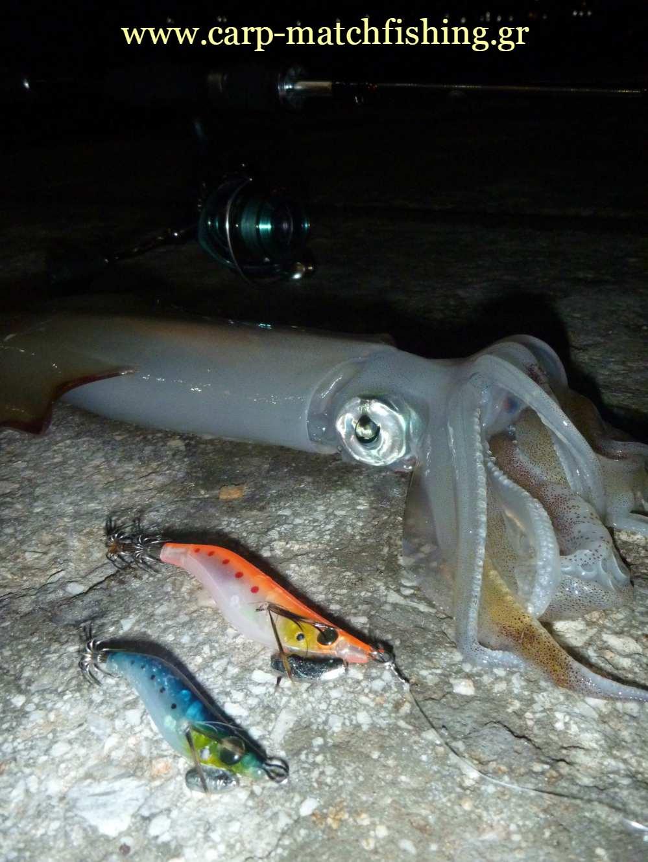 lrf-eging-squid-jigs-carpmatchfishing