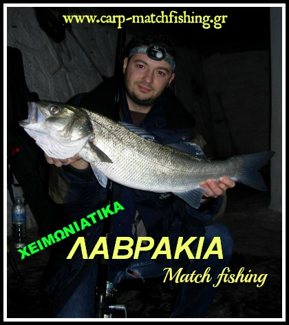 winter-sea-bass-matchfishing