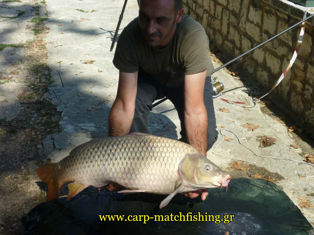 agonas-giannena-koy-kuprinou-carpmatchfishing