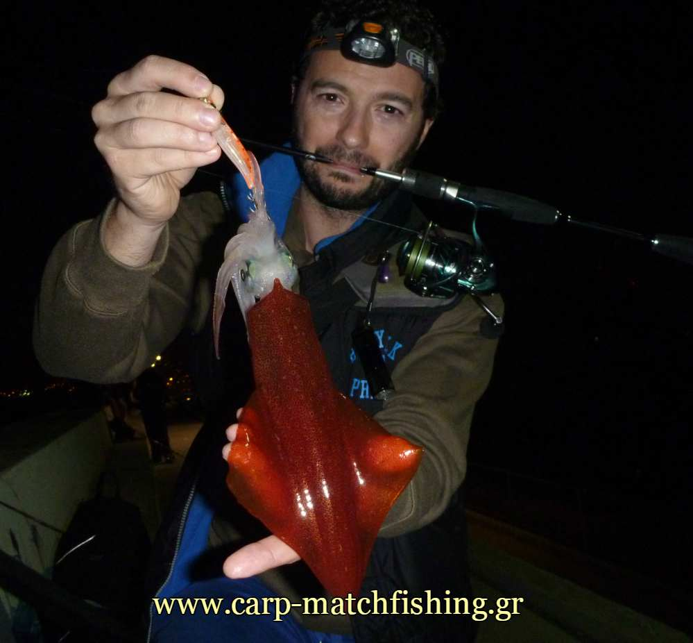 lrf-eging-littlesquid-carpmatchfishing