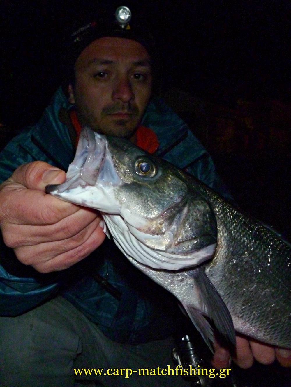 lavraki-chousos-malagra-angry-fish-carpmatchfishing