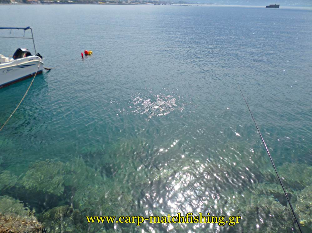 match-fishing-kefalos-limani-carpmatchfishing