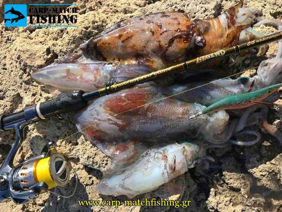 green jig actions eging psarema kalamariou pleyseis carpmatchfishing