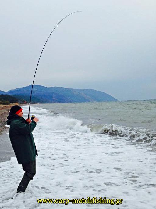 spinning-for-sea-bass-strike-at-waves-carpmatchfishing