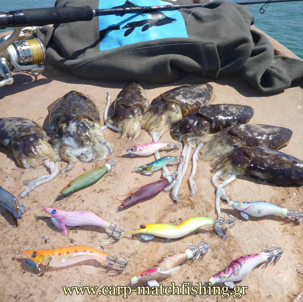 lrf-eging-kalamarieres-carpmatchfishing