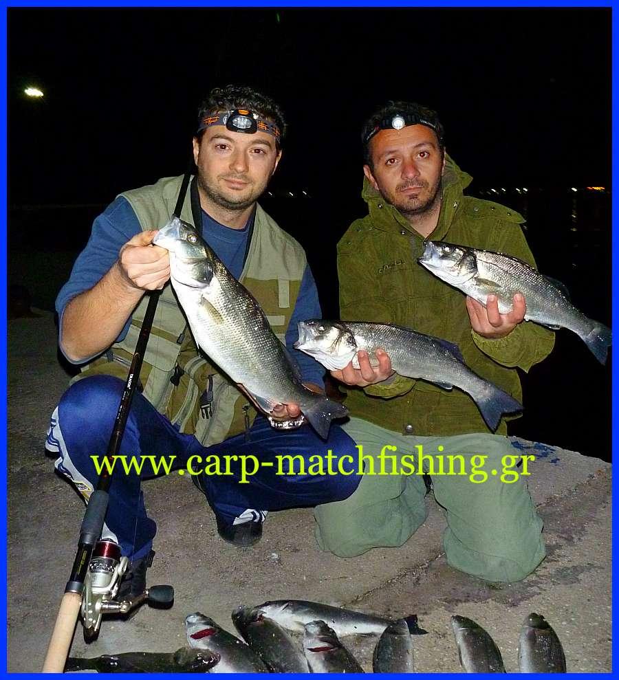 layrakia-carp-matchfishing-gr.jpg