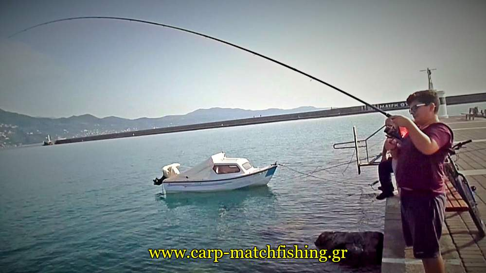 match-fishing-kefaloi-curve-rod-2-carpmatchfishing
