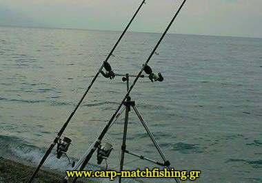 buzzers-surf-pod-rods-carpmatchfishing