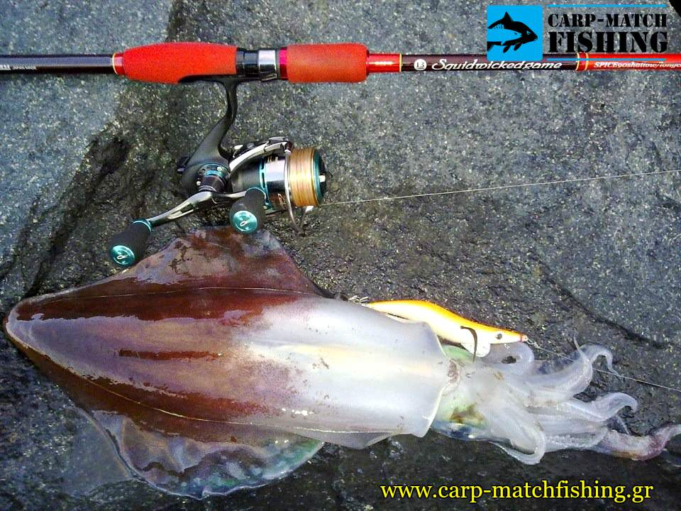 eging squid fishing apo vraxia breaden rod carpmatchfishing