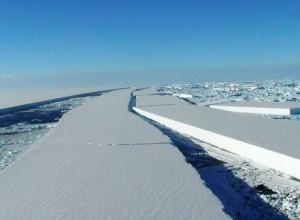 antarctic-ice-collapse1-300x220 Το Αρχιπέλαγος σε Επιστημονικό Φόρουμ στη Ρωσία για την προστασία της Μεσογείου και της Μαύρης Θάλασσας | Ψάρεμα - Fishing - Συζητήσεις - Σκάφος