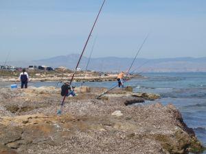 thumb_alroad_7_008_s Πανεπιστημιακό Μάθημα Ωκεανογραφίας & Θαλάσσιας Προστασίας | Ψάρεμα  - Συζητήσεις - Σκάφος