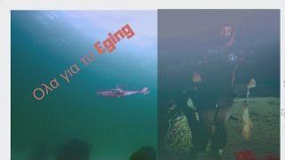 """""""ΜΥΣΤΙΚΑ ΚΑΙ ΚΟΛΠΑ ΓΙΑ ΤΟ ΨΑΡΕΜΑ ΚΑΛΑΜΑΡΙΩΝ""""-SQUID THE TECHNIQUE OF SHORE EGING FISHING!!"""